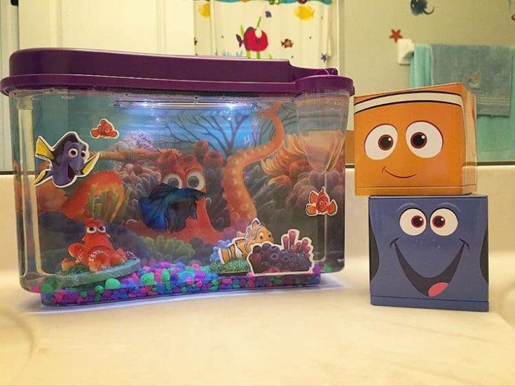 Finding Nemo tank