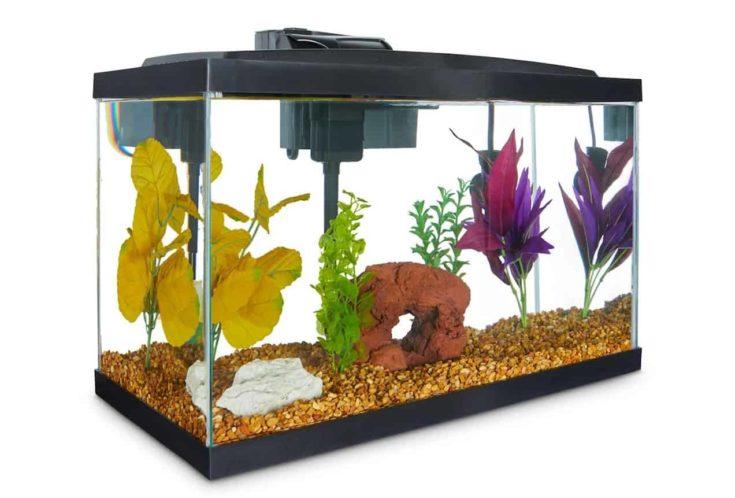 Aqueon Standard Glass Aquarium Tank