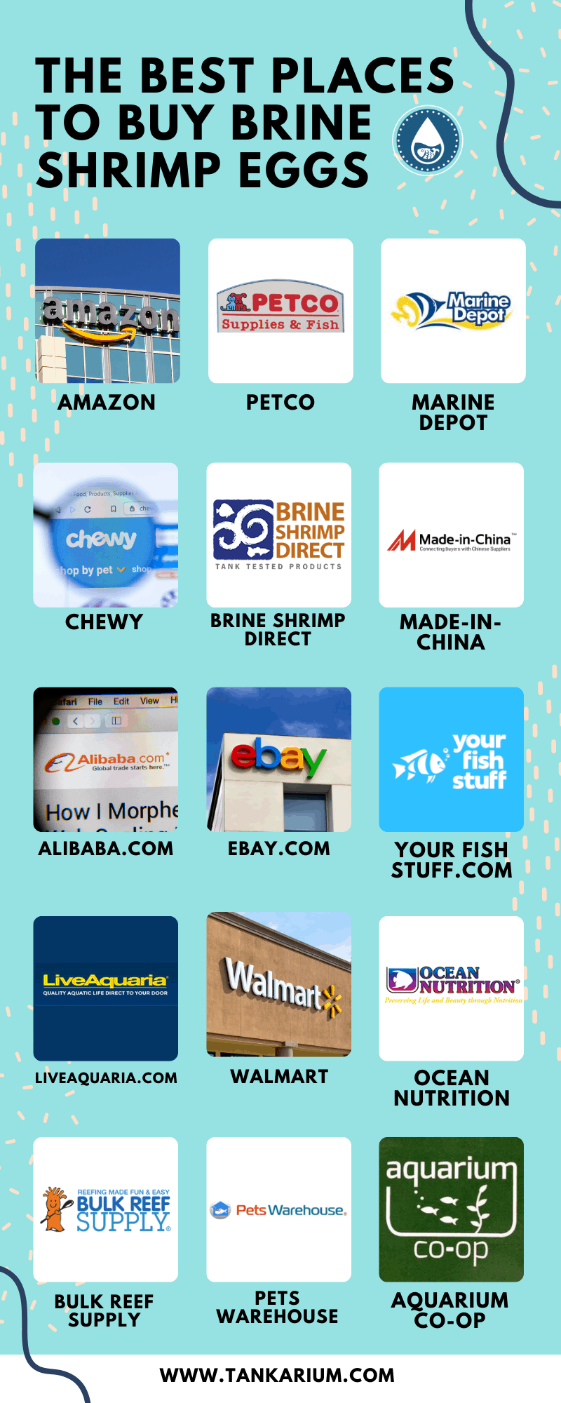The Best Places To Buy Brine Shrimp Eggs - Infographic