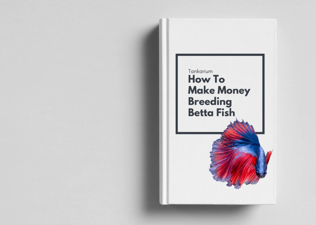 bonus ebook cover art - how to make money breeding beta fish