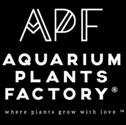 Aquarium plants factory logo