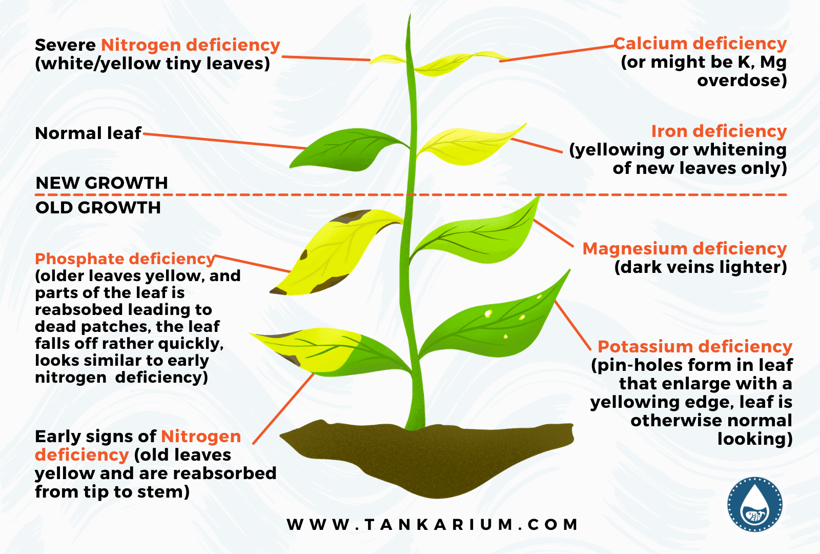 Mini Graphics for 9 Best Aquarium Plant Fertilizers: Which One Is Right For Your Tank?
