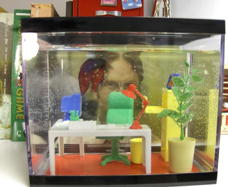Office Scene Tank