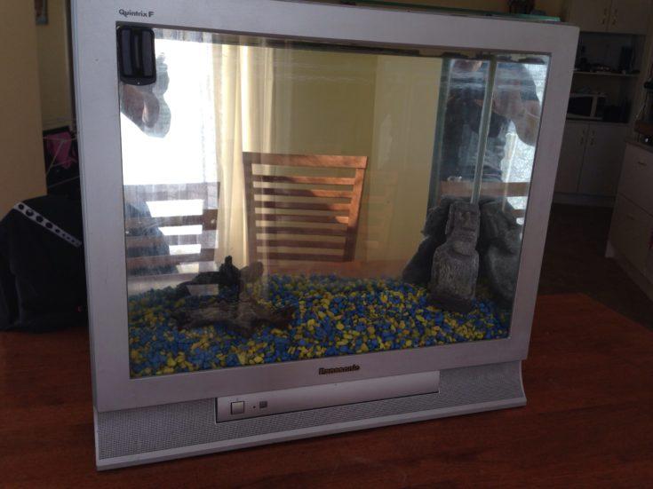 quirky aquarium using an old flatscreen TV