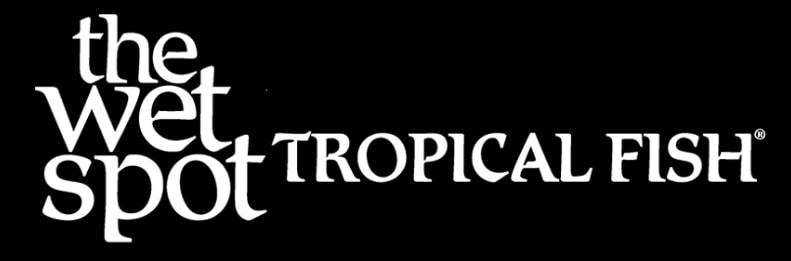 The Wet Spot Tropical Fish logo