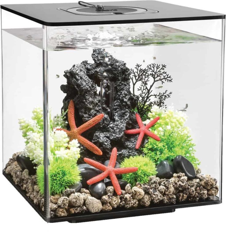 biOrb CUBE MCR Aquarium