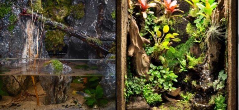 Riparium and Paludarium side by side