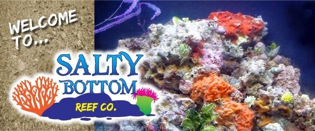 Salty Bottom Reef Company logo