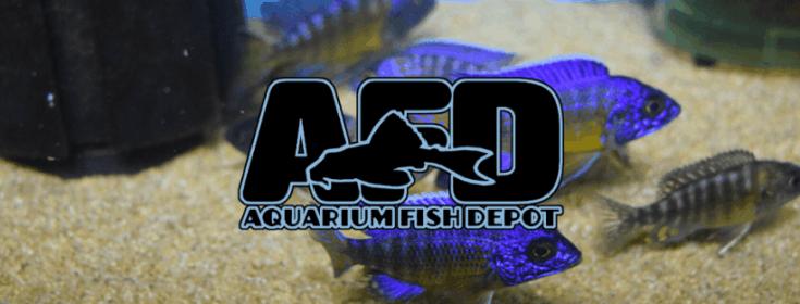 Aquarium Fish Depot