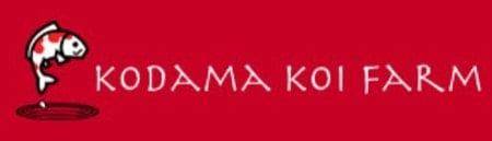 Kodama Koi Farm