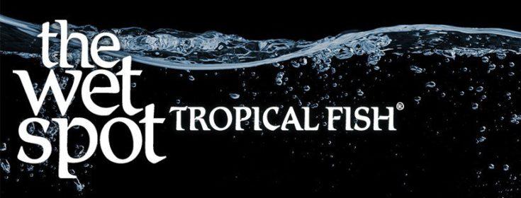 Wet Spot Tropical Fish logo