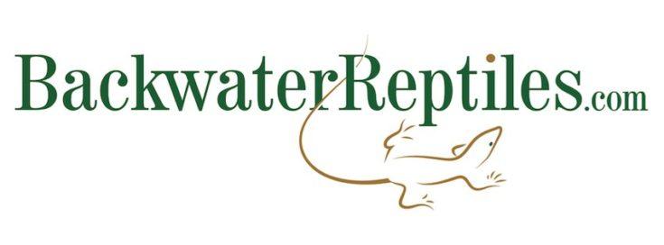Backwater Reptiles banner